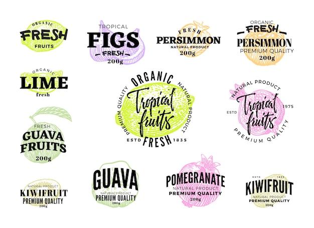 Conjunto de etiquetas de alimentos exóticos de frutas tropicales de diferentes colores en el estilo de dibujo aislado Vector Premium