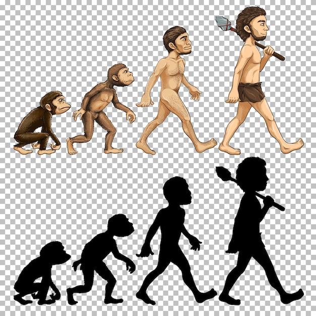 Conjunto de evolución humana vector gratuito