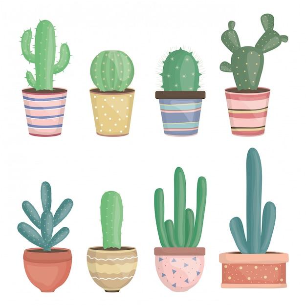 Conjunto de exóticas plantas de cactus en macetas de cerámica. vector gratuito