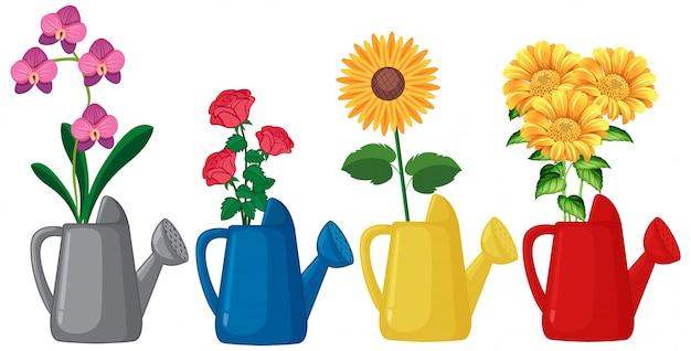 Conjunto de flores en la regadera sobre fondo blanco. vector gratuito