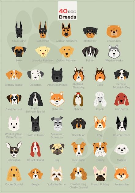 Conjunto de fondo de ilustraciones de cabeza de perro Vector Premium