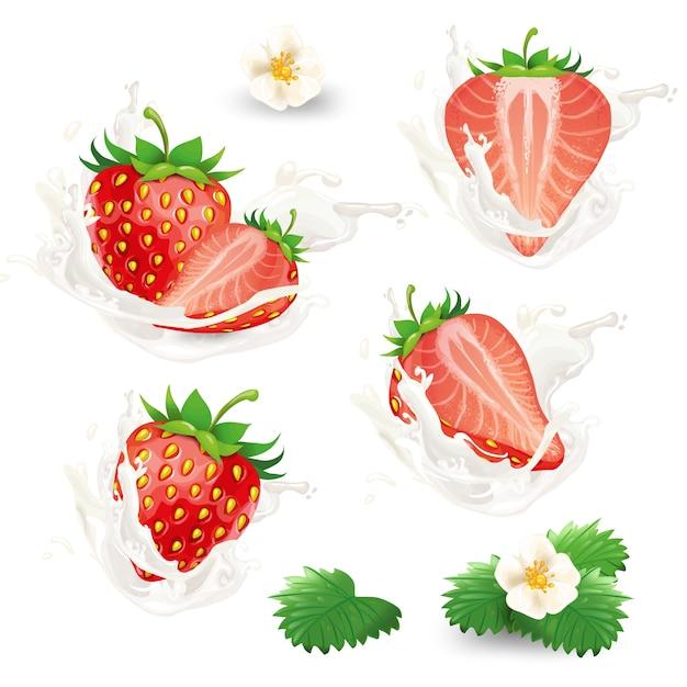 Conjunto de fresas enteras y medias con flores, hojas y crema, leche o salpicaduras de yogur. vector gratuito