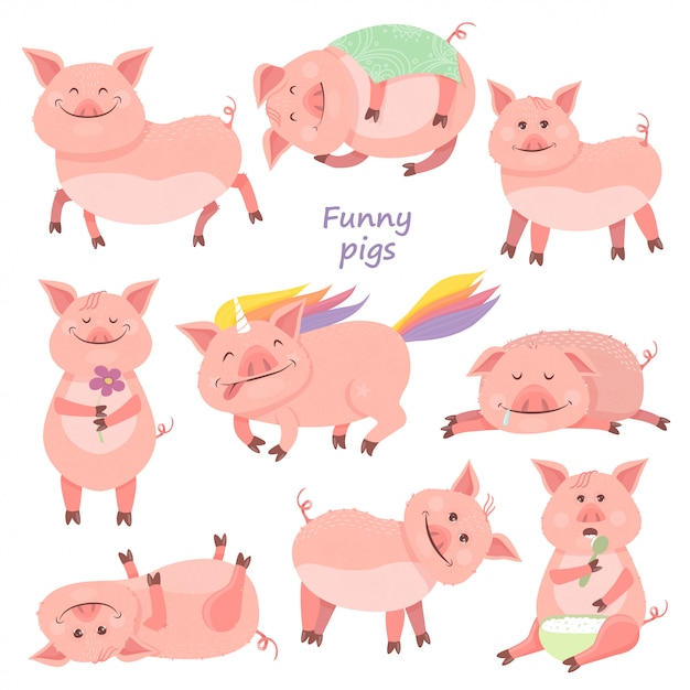 Conjunto de funny piggy Vector Premium