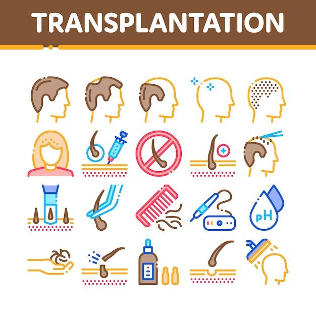 Conjunto de iconos de colección de trasplante de cabello Vector Premium