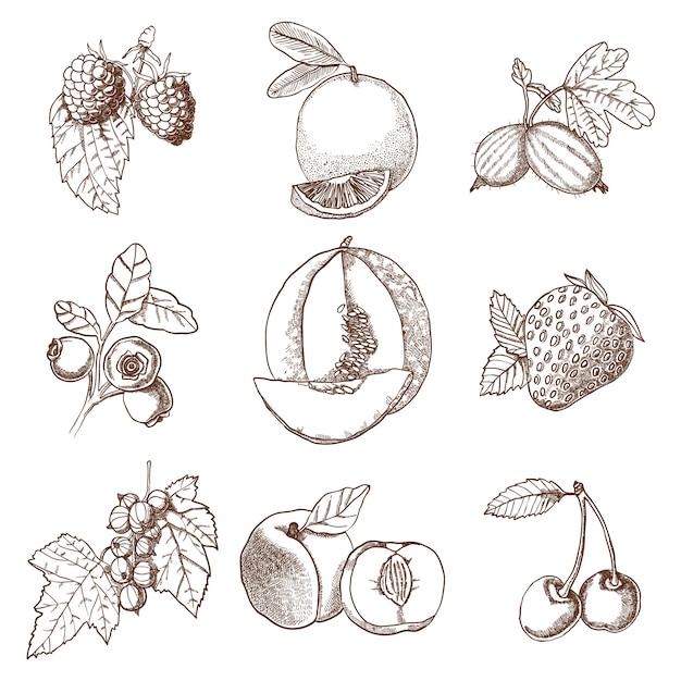 Conjunto de iconos decorativos vector gratuito