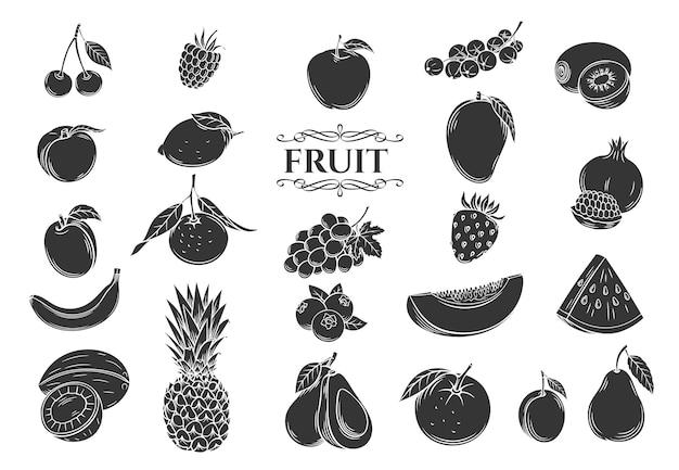 Conjunto de iconos de glifo de fruta. colección de estilo retro decorativo frutas y bayas aisladas para tienda Vector Premium