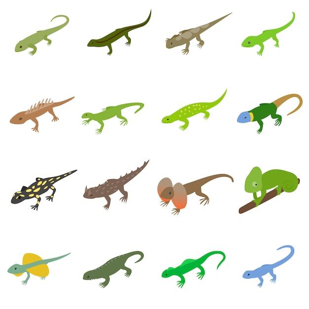 Conjunto de iconos de lagarto Vector Premium