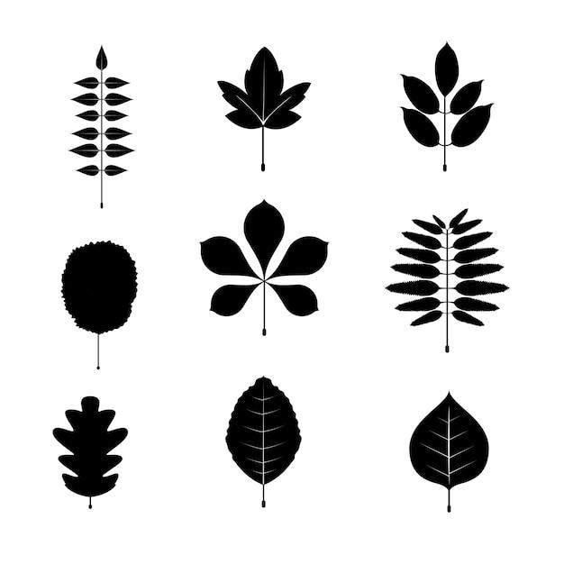 Conjunto De Iconos Y Símbolos De Hoja En Blanco Y Negro Ilustración