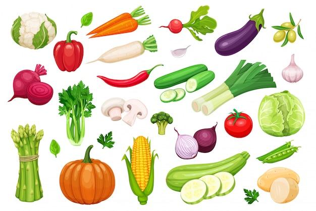 Conjunto de iconos de verduras en estilo de dibujos animados. Vector Premium