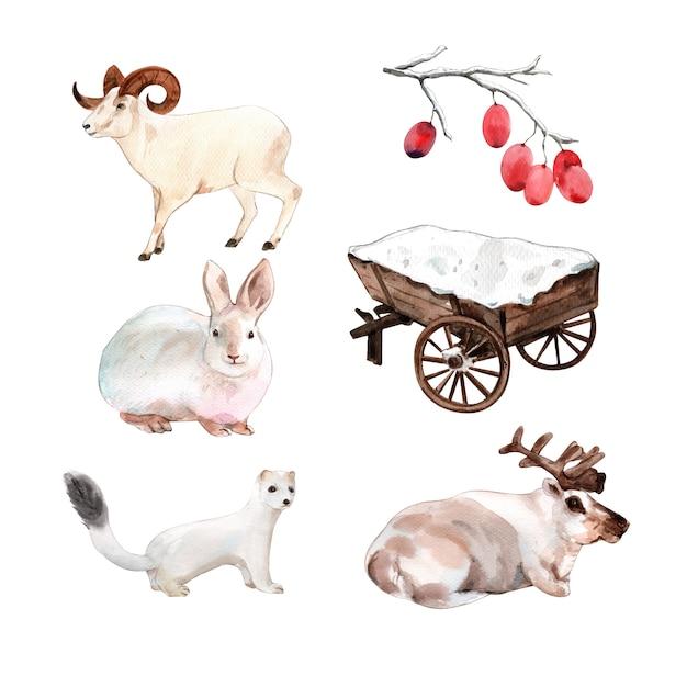 Conjunto de ilustración de animales de invierno acuarela aislado. vector gratuito