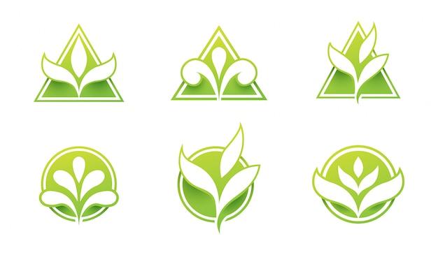 Conjunto de logotipo de la hoja Vector Premium