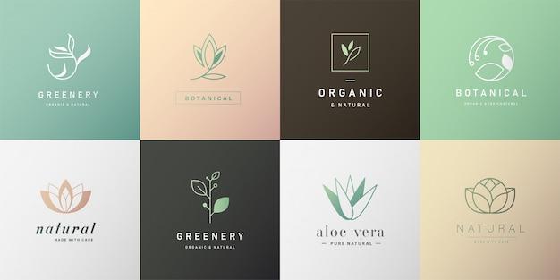 Conjunto de logotipo natural para la marca en diseño moderno. Vector Premium