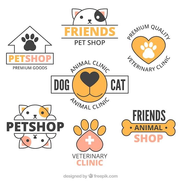 Conjunto de logotipos con detalles en naranja Vector Premium