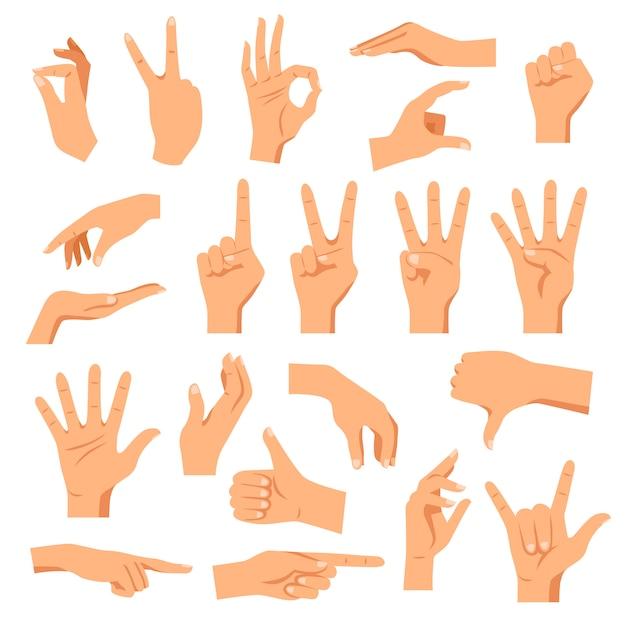 Conjunto de manos vector gratuito