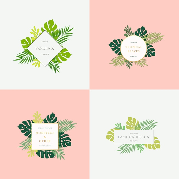 Conjunto de monstera tropical leaves fashion signs o plantillas de logotipo. Vector Premium
