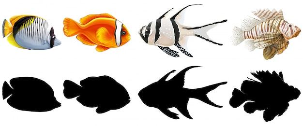 Conjunto de peces de agua salada vector gratuito