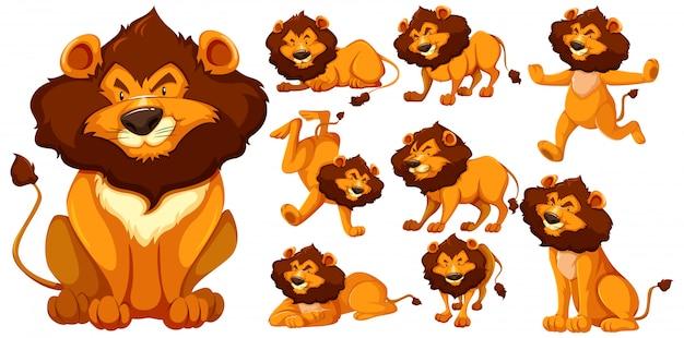 Conjunto de personaje de dibujos animados de león vector gratuito