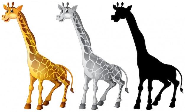 Conjunto de personaje jirafa. vector gratuito