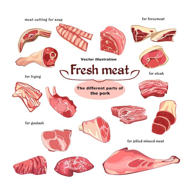 Conjunto de piezas de carne de cerdo de corte natural vector gratuito