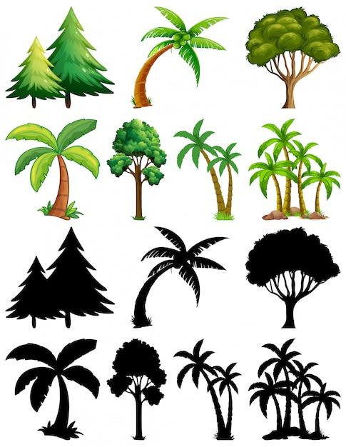 Conjunto de plantas y árboles con su silueta. vector gratuito