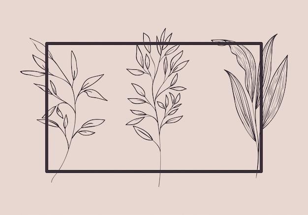 Conjunto de plantas botánicas dibujadas. Vector Premium