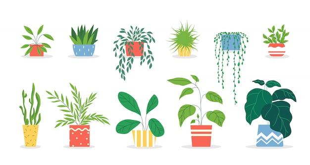Conjunto de plantas en macetas vector gratuito
