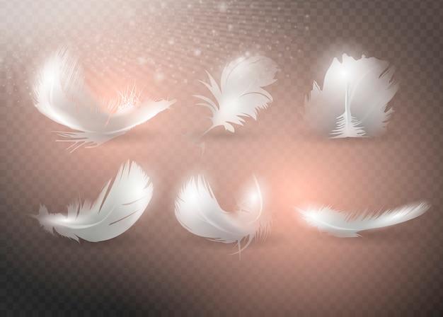 Conjunto de plumas realistas. Vector Premium