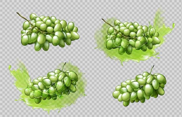 Conjunto de racimos y salpicaduras de uvas realistas vector gratuito