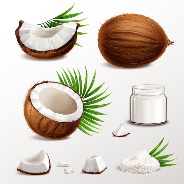 Conjunto realista de coco con segmentos de nuez trozos de carne tarro leche en polvo hojuelas secas hojas de palma ilustración vector gratuito