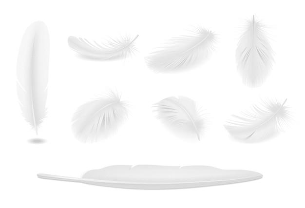 Conjunto realista de plumas de pájaro limpio blanco aislado vector gratuito