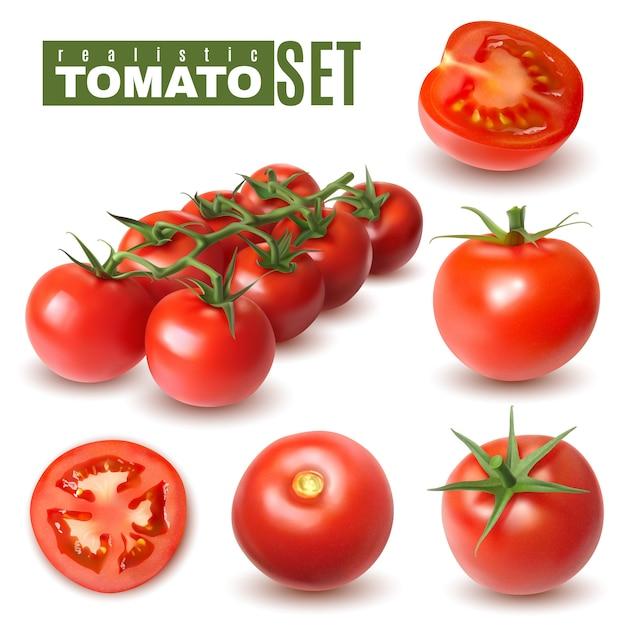 Conjunto realista de tomate de imágenes aisladas con frutas de tomate individuales y grupos con sombras y texto vector gratuito