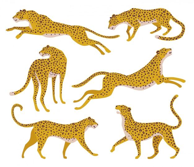 Conjunto de siluetas abstractas de leopardos. Vector Premium