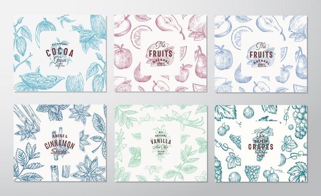 Conjunto de tarjetas dibujadas a mano de uvas, frutas, granos de cacao, menta, nueces y especias. vector gratuito