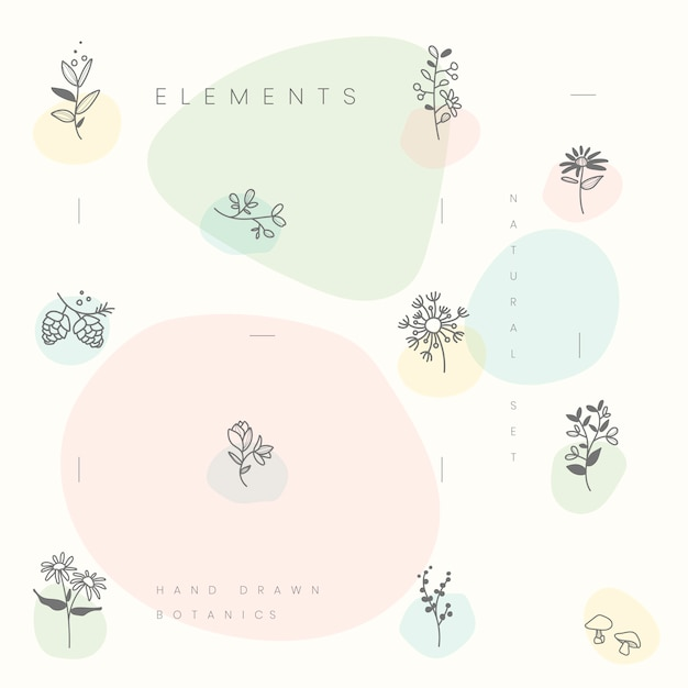 Conjunto de vector de elementos botánicos dibujados a mano vector gratuito