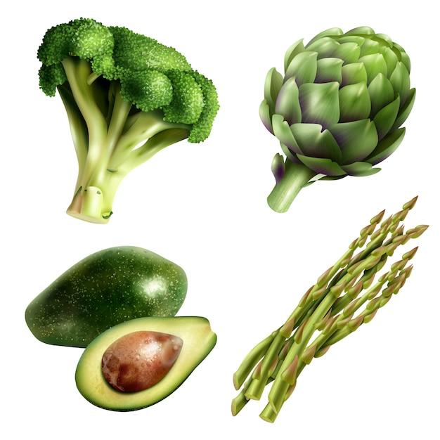 Conjunto de verduras en estilo realista vector gratuito
