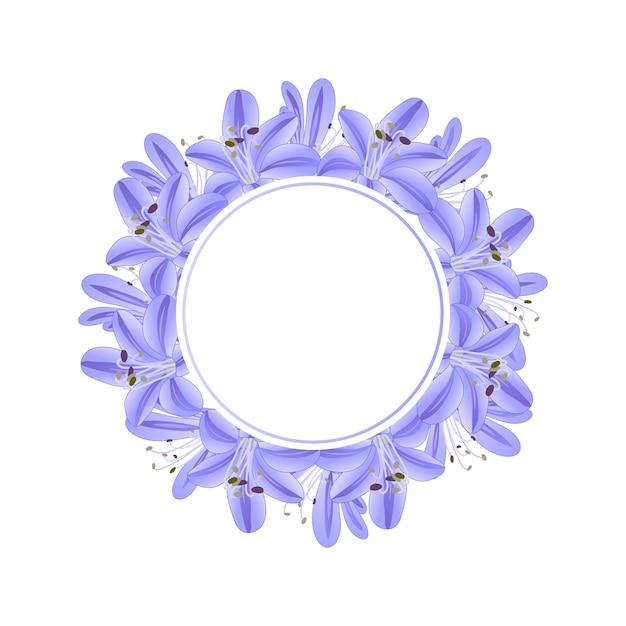 Corona de agapanthus morado azul Vector Premium