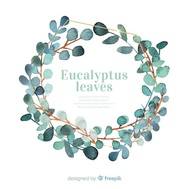 Corona de hojas de eucalipto en acuarela vector gratuito