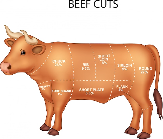 2c5049ba2c Cortes de carne de vacuno Vector Premium