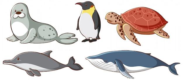 Criaturas marinas aisladas vector gratuito
