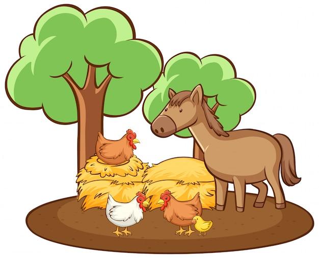 Cuadro aislado de pollo y caballo vector gratuito