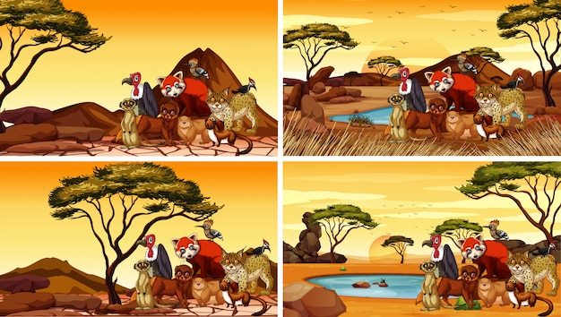 Cuatro escenas con muchos animales en el desierto vector gratuito