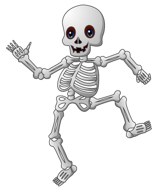 Cute esqueleto de dibujos animados | Descargar Vectores Premium