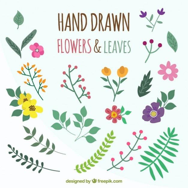 Dé las flores y las hojas de colores   Descargar Vectores gratis