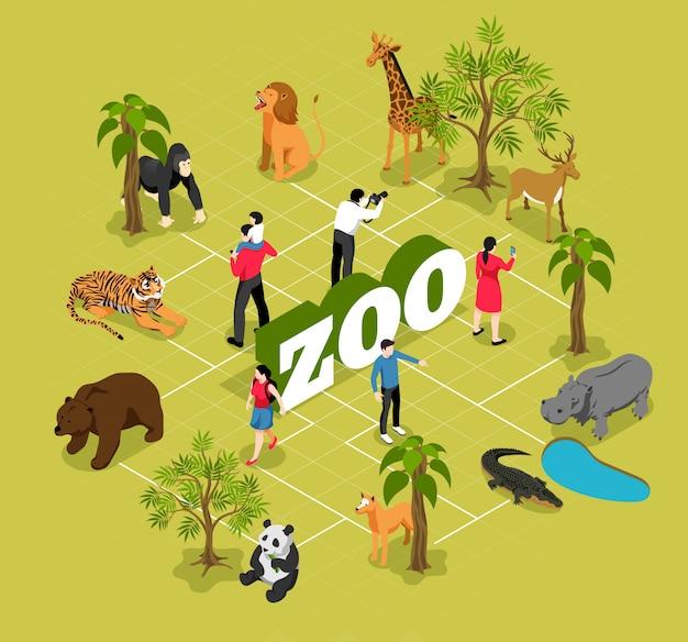 Diagrama de flujo isométrico del zoológico con animales cerca de los árboles y la piscina y visitantes en oliva vector gratuito