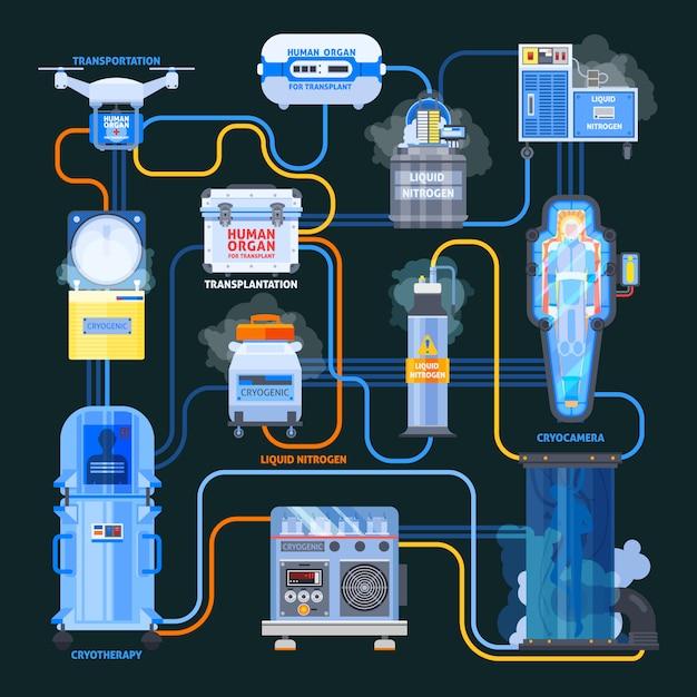 Diagrama de flujo plano de trasplante de cryonics infografía vector gratuito