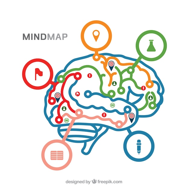 Diagrama moderno con cerebro colorido | Descargar Vectores gratis