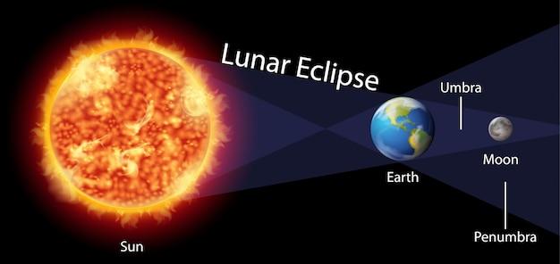 Diagrama que muestra el eclipse lunar con tierra y sol vector gratuito