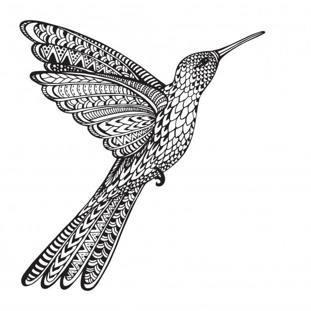 Dibujado a mano volando colibri en estilo ornamentado doodle ...