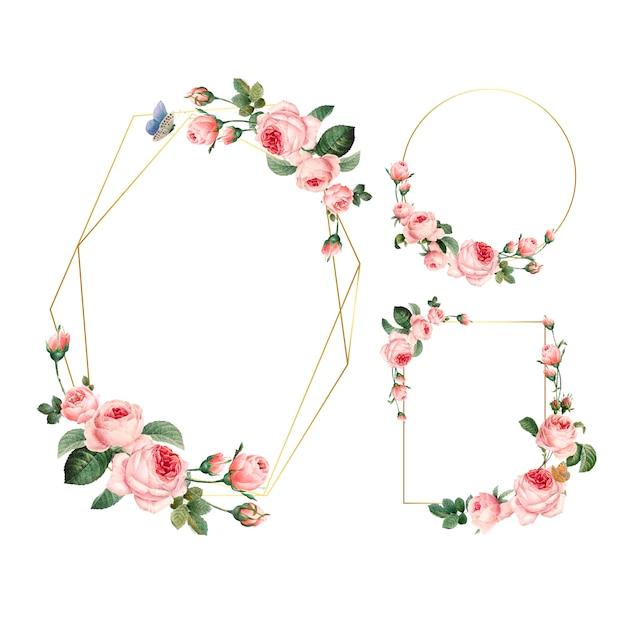 Dibujado a mano en blanco rosa marcos de rosas en el conjunto de fondo blanco vector gratuito