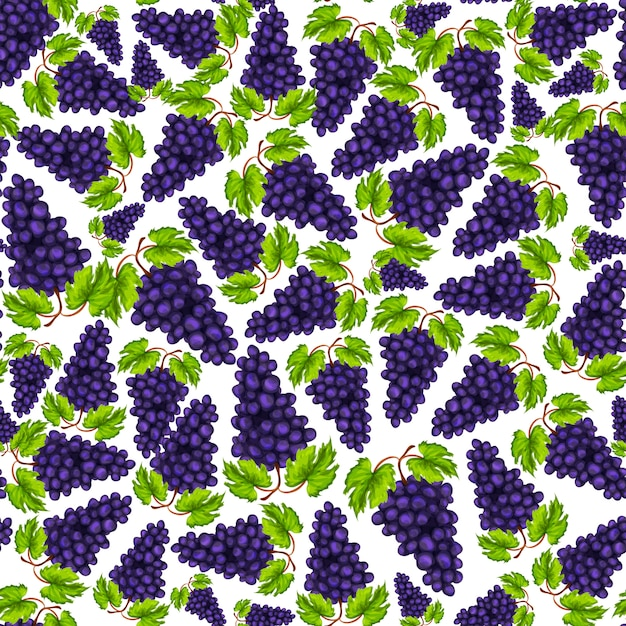 Dibujado a mano sin fisuras uvas naturales orgánicas frutas patrón dibujado a mano ilustración vectorial vector gratuito